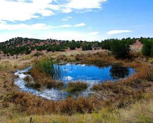 Galisteo Spring Insider Tour @ Galisteo Basin Preserve