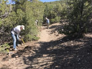 City Trail Work in Dale Ball Trails, Summer 2019