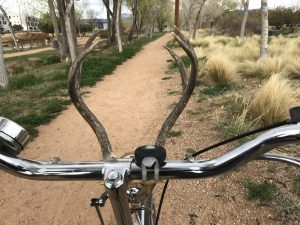 Self-Guided Earth Day Acequia and River Cruise